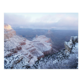 Winter on the South Rim, Grand Canyon National Postcard