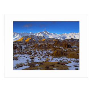 """Winter On Whitney"" Postcard"