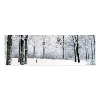 Winter park gift tag mini business card