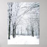 Winter park poster