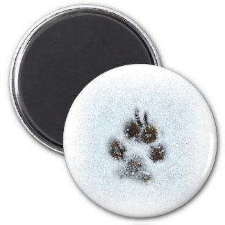 Winter Paw Print Magnet