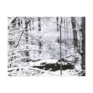 Winter Peace Canvas Print