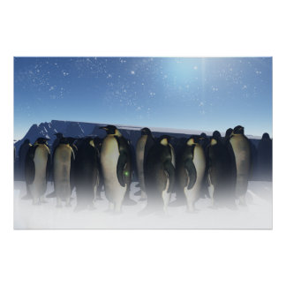 Winter Penguins Poster