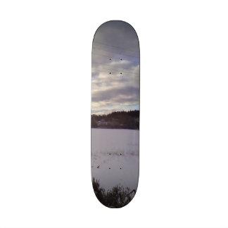 Winter photo skate board decks