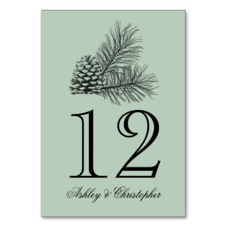 Winter Pine Cone Wedding Reception Table Number