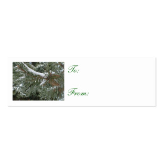 Winter Pine Gift Tags Double-Sided Mini Business Cards (Pack Of 20)