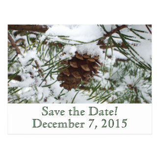 Winter Pine Save the Date Postcard