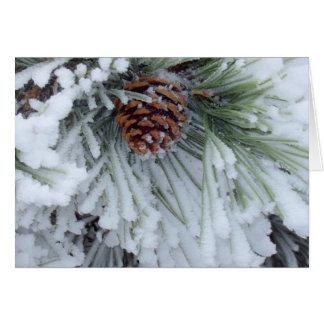 Winter Pinecone Card