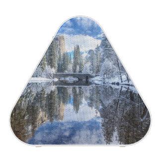 Winter Reflection at Yosemite Speaker