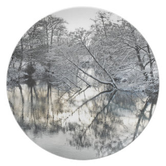 Winter Reflections Plate