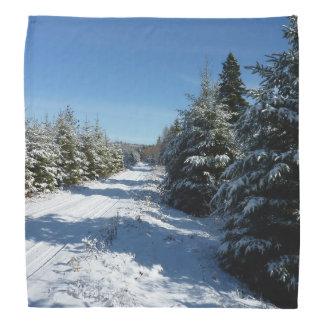 Winter Road Bandannas