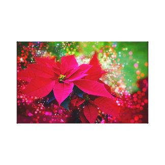 Winter rose, poinsettia/Christmas star festively Canvas Print