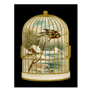 Winter Scene Birdcage Postcard