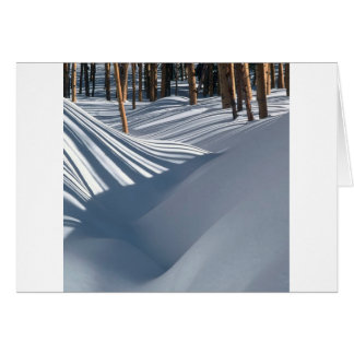 Winter Scene Golden Trees In The Snow Tesuque Card