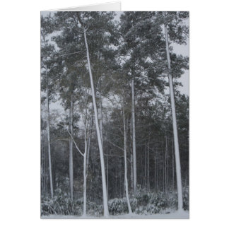 Winter Scene II Card