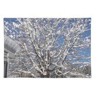 winter scene place mat