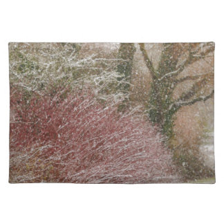 Winter Scene Placemat