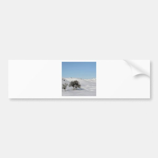 Winter Scene Snow Scape Bumper Stickers