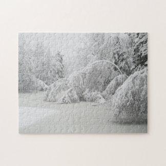 Winter Scenery Puzzle