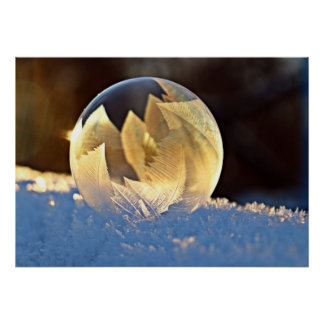 Winter Snow Bubble with Leaves Poster