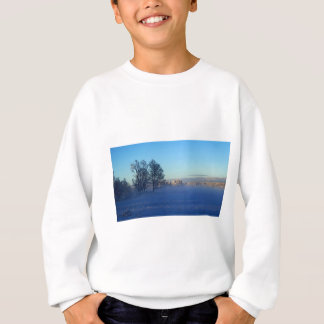 Winter Snow Fog Sweatshirt