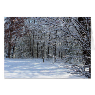 Winter Snow Notecard