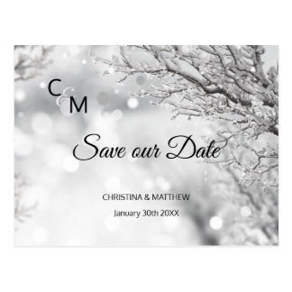 Winter Snow Snowflakes Wedding SAVE OUR DATE Postcard