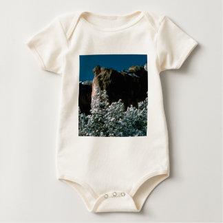 winter snows in the desert baby bodysuit