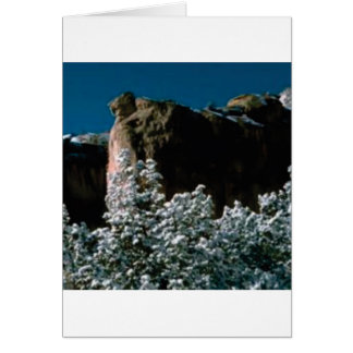 winter snows in the desert card