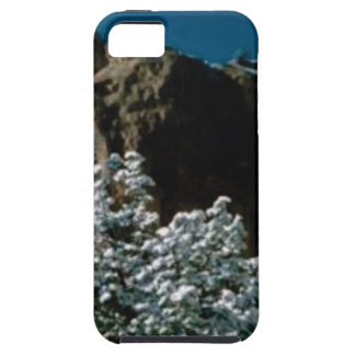 winter snows in the desert case for the iPhone 5