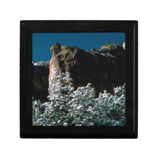 winter snows in the desert gift box