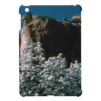 winter snows in the desert iPad mini cover