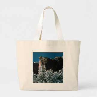 winter snows in the desert large tote bag