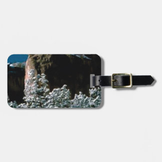 winter snows in the desert luggage tag