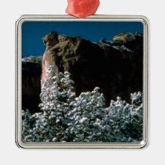 winter snows in the desert metal ornament