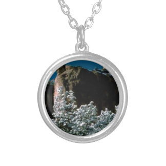 winter snows in the desert silver plated necklace