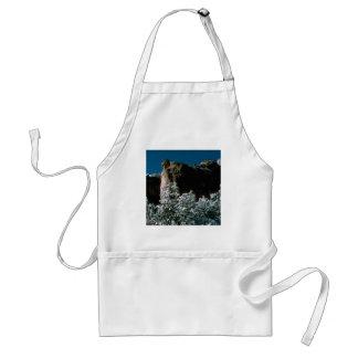 winter snows in the desert standard apron