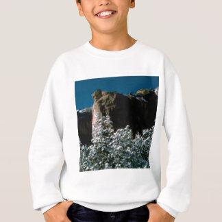 winter snows in the desert sweatshirt