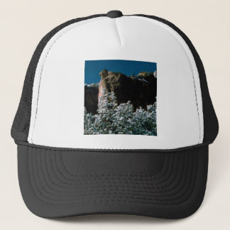 winter snows in the desert trucker hat
