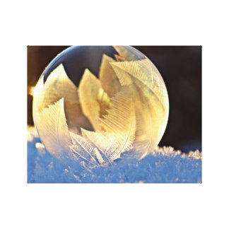 Winter Snowy Bubble with Leaves Canvas Print