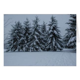 Winter Snowy Cedars Card