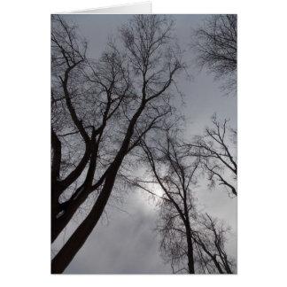 Winter Solitude Card