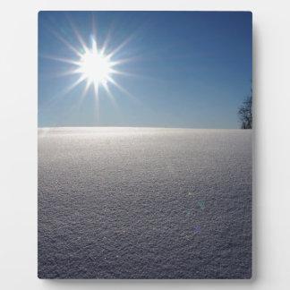 Winter Solstice Plaque