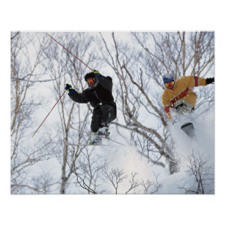 Winter Sports Poster