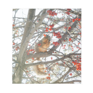 Winter Squirrel In Berry Tree Notepad