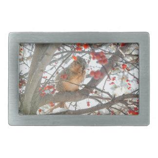 Winter Squirrel In Berry Tree Rectangular Belt Buckles