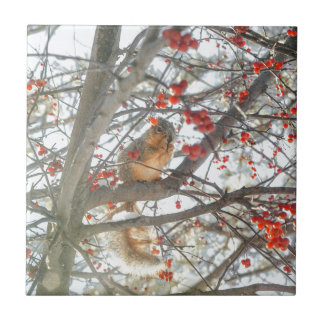 Winter Squirrel In Berry Tree Tile