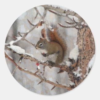 Winter Squirrel, Snow & Red Berries Xmas Design Round Sticker