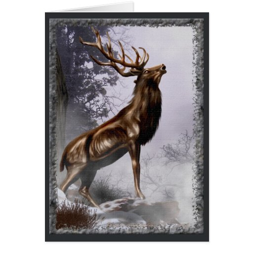 Winter Stag Card