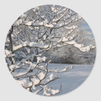 Winter Storm Classic Round Sticker